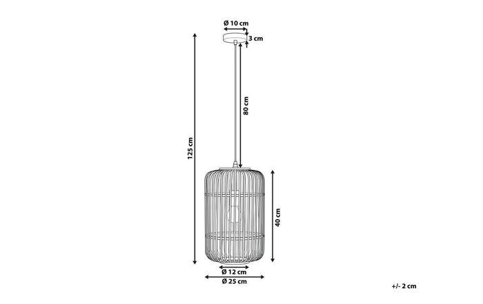 Pakabinamas šviestuvas YZ3729